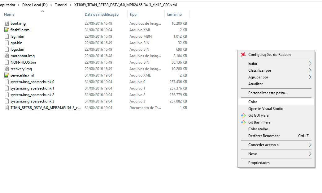 Colando arquivos na pasta do firmware