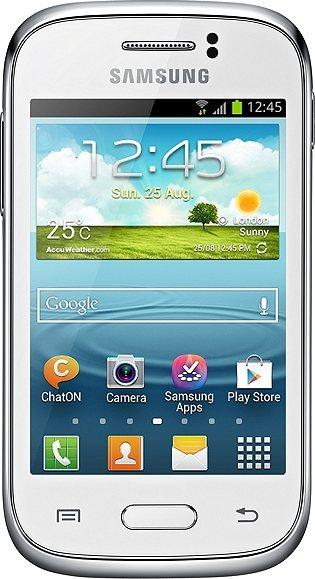 GALAXY Young Plus GT-S6293T
